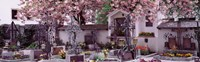 """Flowers on tombstones, Tirol, Austria by Panoramic Images - 36"""" x 12"""", FulcrumGallery.com brand"""