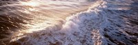 """Waves FL USA by Panoramic Images - 36"""" x 12"""""""