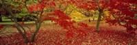 "Westonburt Gloucestershire England by Panoramic Images - 36"" x 12"""