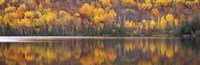 """Blue Water at Laurentide, Quebec, Canada by Panoramic Images - 36"""" x 12"""" - $34.99"""
