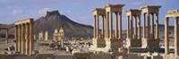 Colonnades on an arid landscape, Palmyra, Syria Fine Art Print