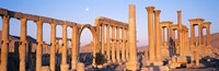 "Ruins, Palmyra, Syria by Panoramic Images - 36"" x 12"""
