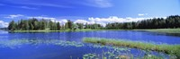 """Lakelands, Finland by Panoramic Images - 36"""" x 12"""", FulcrumGallery.com brand"""