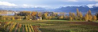 """Farm, Rapperswil, Zurich, Switzerland by Panoramic Images - 36"""" x 12"""""""