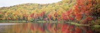 """Savoy Mountain State Forest, Massachusetts, USA by Panoramic Images - 36"""" x 12"""", FulcrumGallery.com brand"""