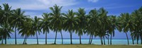 "Palms & lagoon Aitutaki Cook Islands by Panoramic Images - 36"" x 12"" - $34.99"