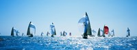 """Sailboat Race, Key West Florida, USA by Panoramic Images - 36"""" x 12"""""""