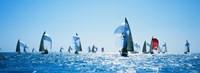 Sailboat Race, Key West Florida, USA Framed Print