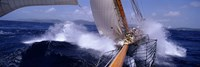 """Yacht Race, Caribbean by Panoramic Images - 36"""" x 12"""""""