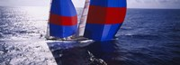 """High angle view of a yacht in the sea, Caribbean by Panoramic Images - 36"""" x 12"""""""