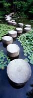 Shrine Garden, Kyoto, Japan Framed Print