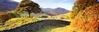 """Lake District, United Kingdom by Panoramic Images - 36"""" x 12"""""""
