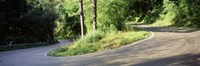 """Country Road Southern Germany by Panoramic Images - 36"""" x 12"""""""