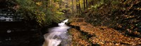 "Buttermilk Creek, Ithaca, New York State, USA by Panoramic Images - 36"" x 12"""