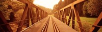 "Railroad Tracks and Bridge Germany by Panoramic Images - 36"" x 12"""
