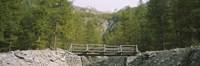Wooden footbridge across a stream in a mountain range, Switzerland Fine Art Print