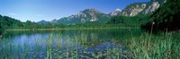 """Alpsee Bavaria Germany by Panoramic Images - 36"""" x 12"""""""