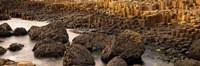 "Giant's Causeway, Antrim Coast, Northern Ireland by Panoramic Images - 36"" x 12"""
