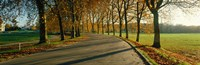 """Road at Chateau Chambord France by Panoramic Images - 36"""" x 12"""""""
