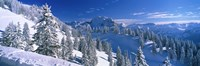 "Alpine Scene, Bavaria, Germany by Panoramic Images - 36"" x 12"""
