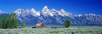 Barn On Plain Before Mountains, Grand Teton National Park, Wyoming, USA Fine Art Print