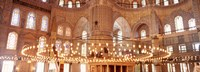 """interior of Blue Mosque, Istanbul, Turkey by Panoramic Images - 36"""" x 12"""""""