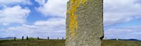 """Yellow markings on a pillar in the Ring Of Brodgar, Orkney Islands, Scotland, United Kingdom by Panoramic Images - 36"""" x 12"""""""