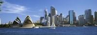 Australia, New South Wales, Sydney, Sydney harbor, View of Sydney Opera House and city Fine Art Print