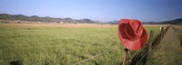 """USA, California, Red cowboy hat hanging on the fence by Panoramic Images - 36"""" x 12"""" - $34.99"""