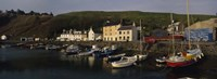 """Boats Moored At The Dock, Stonehaven, Scotland, United Kingdom by Panoramic Images - 36"""" x 12"""""""