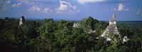 "High Angle View Of An Old Temple, Tikal, Guatemala by Panoramic Images - 36"" x 13"""