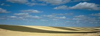 """Clouded sky over a striped field, Geraldine, Montana, USA by Panoramic Images - 36"""" x 12"""""""