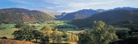 High angle view of trees on the mountainside, Borrowdale, Lake District, England by Panoramic Images - various sizes