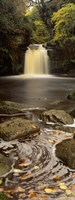 """Waterfall In A Forest, Thomason Foss, Goathland, North Yorkshire, England, United Kingdom by Panoramic Images - 12"""" x 36"""""""