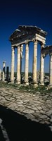 Old ruins of a built structure, Entrance Columns, Apamea, Syria Fine Art Print