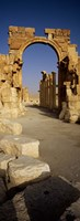 "Old Ruins Palmyra, Syria (vertical) by Panoramic Images - 12"" x 36"""