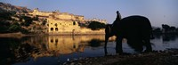 "Side profile of a man sitting on an elephant, Amber Fort, Jaipur, Rajasthan, India by Panoramic Images - 36"" x 12"""
