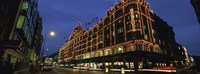 """Low angle view of buildings lit up at night, Harrods, London, England by Panoramic Images - 36"""" x 12"""""""