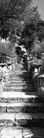 """Low angle view of steps in a garden, Neptune's Steps, Tresco Abbey Garden, Tresco, Isles Of Scilly, England by Panoramic Images - 12"""" x 36"""""""