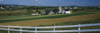 "Amish Farms, Pennsylvania by Panoramic Images - 36"" x 12"""