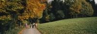 Group of people walking on a walkway in a park, St. Peter, Black Forest, Baden-Wurttemberg, Germany Fine Art Print