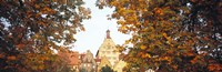 """Low angle view of buildings viewed through trees, Bietigheim, Baden-Wurttemberg, Germany by Panoramic Images - 36"""" x 12"""""""