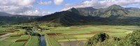 High angle view of a field with mountains in the background, Hanalei Valley, Kauai, Hawaii, USA Fine Art Print