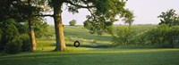 "Tire swing on a tree by Panoramic Images - 36"" x 12"""