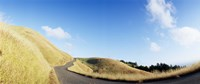 """Curved road on the mountain, Marin County, California, USA by Panoramic Images - 36"""" x 12"""", FulcrumGallery.com brand"""