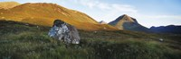 """Lichen covered rock in a field, Glen Sligachan, Cuillins, Isle Of Skye, Scotland by Panoramic Images - 36"""" x 12"""""""
