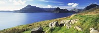 Rocks on the hillside, Elgol, Loch Scavaig, view of Cuillins Hills, Isle Of Skye, Scotland Fine Art Print