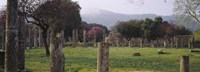 """Ancient Olympia, Olympic Site, Greece by Panoramic Images - 36"""" x 12"""""""