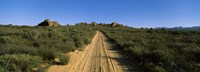 "Dirt road passing through a landscape, Kouebokkeveld, Western Cape Province, South Africa by Panoramic Images - 36"" x 12"" - $34.99"