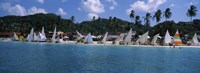 """Sailboats on the beach, Grenada Sailing Festival, Grand Anse Beach, Grenada by Panoramic Images - 36"""" x 12"""""""